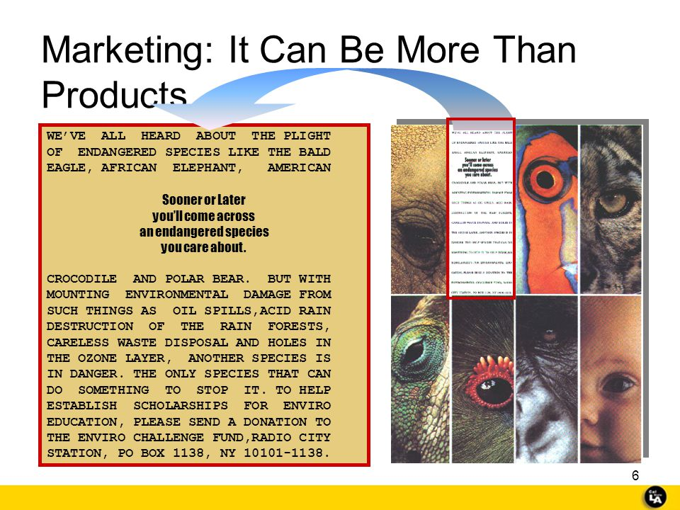 Marketing: It Can Be More Than Products ...