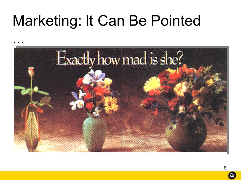 Marketing: It Can Be Pointed ...