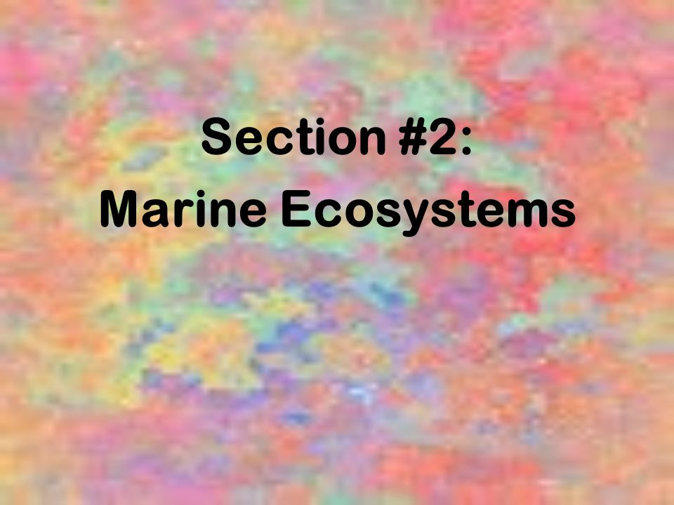 Section #2: Marine Ecosystems