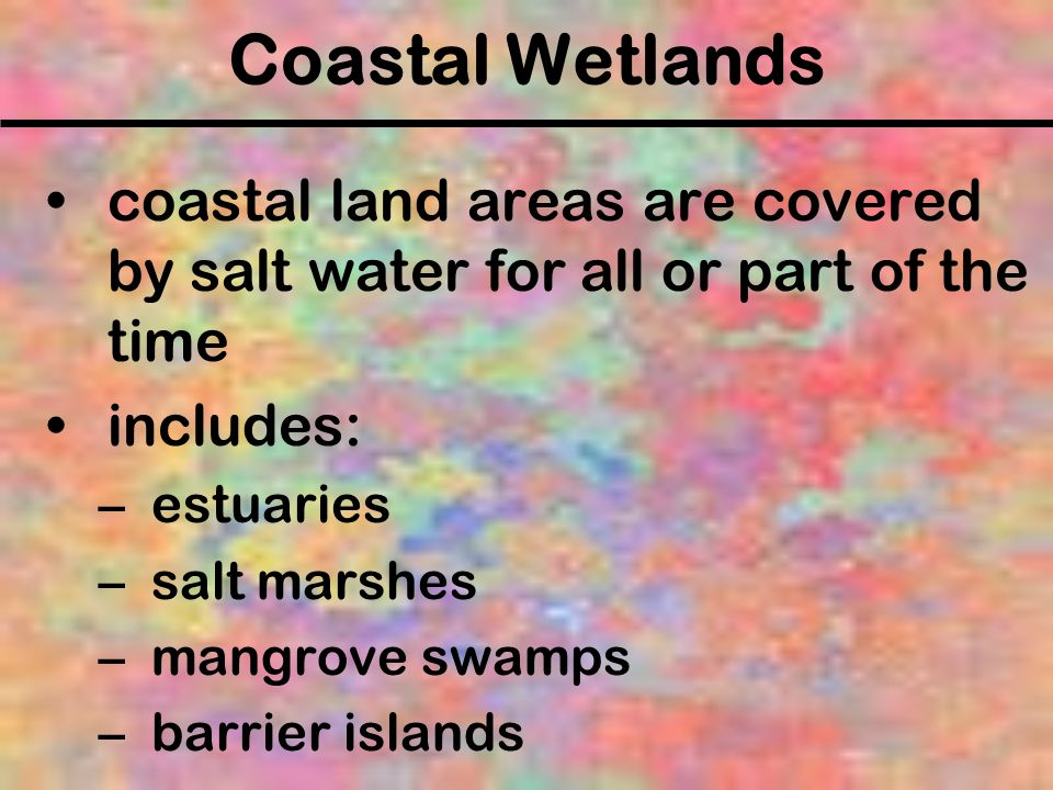 Coastal Wetlands coastal land areas are covered by salt water for all or part of the time. includes: