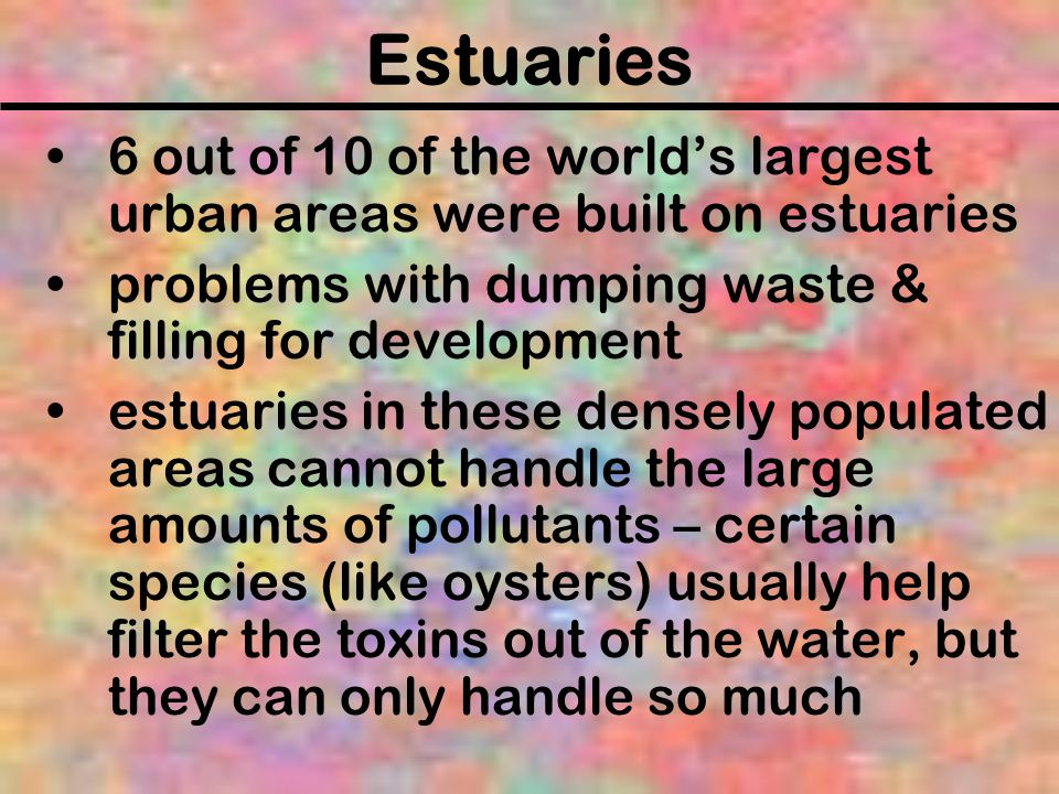 Estuaries 6 out of 10 of the world's largest urban areas were built on estuaries. problems with dumping waste & filling for development.