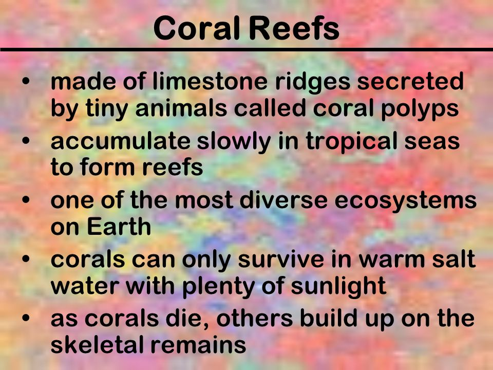 Coral Reefs made of limestone ridges secreted by tiny animals called coral polyps. accumulate slowly in tropical seas to form reefs.