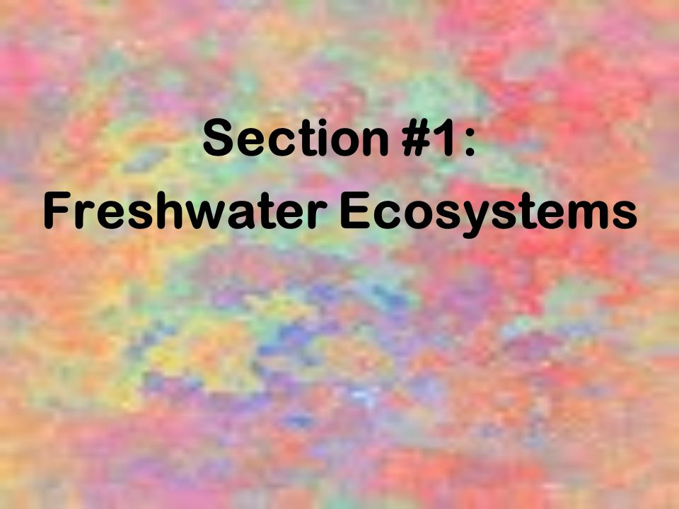 Section #1: Freshwater Ecosystems