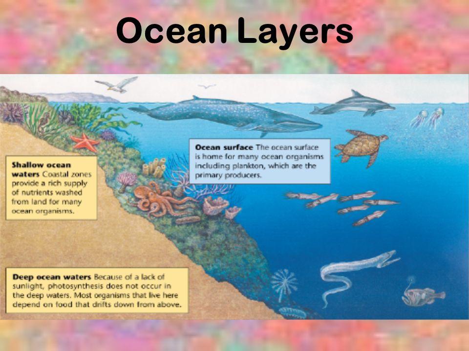 Ocean Layers