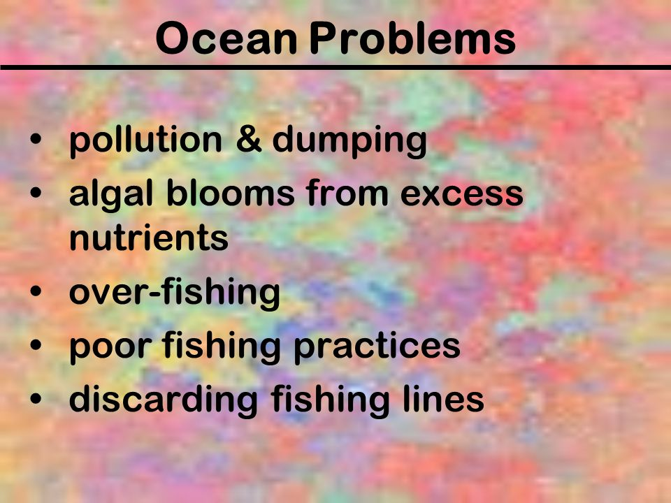 Ocean Problems pollution & dumping algal blooms from excess nutrients