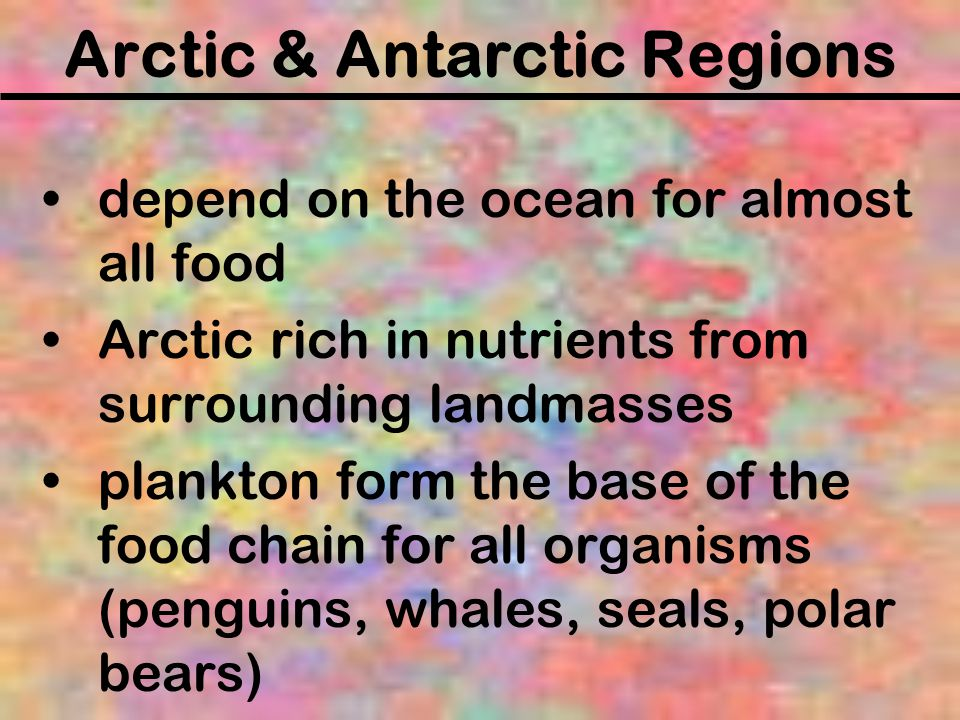 Arctic & Antarctic Regions