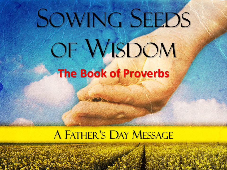 Sowing Seeds of Wisdom The Book of Proverbs A Father's Day Message