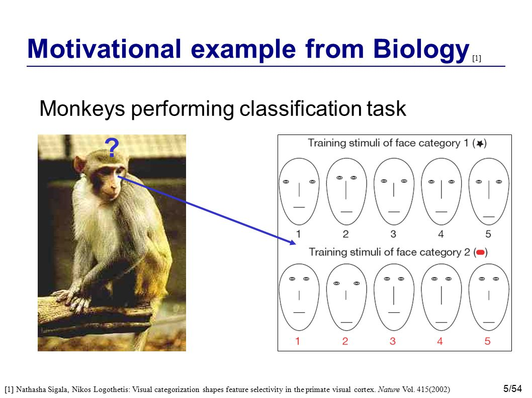 Motivational example from Biology