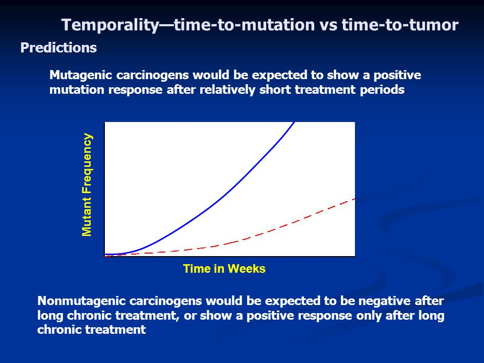 Temporality—time-to-mutation vs time-to-tumor
