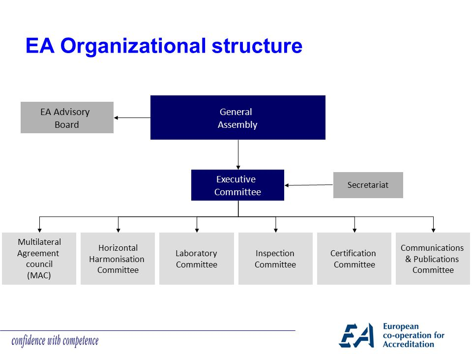 EA Organizational structure