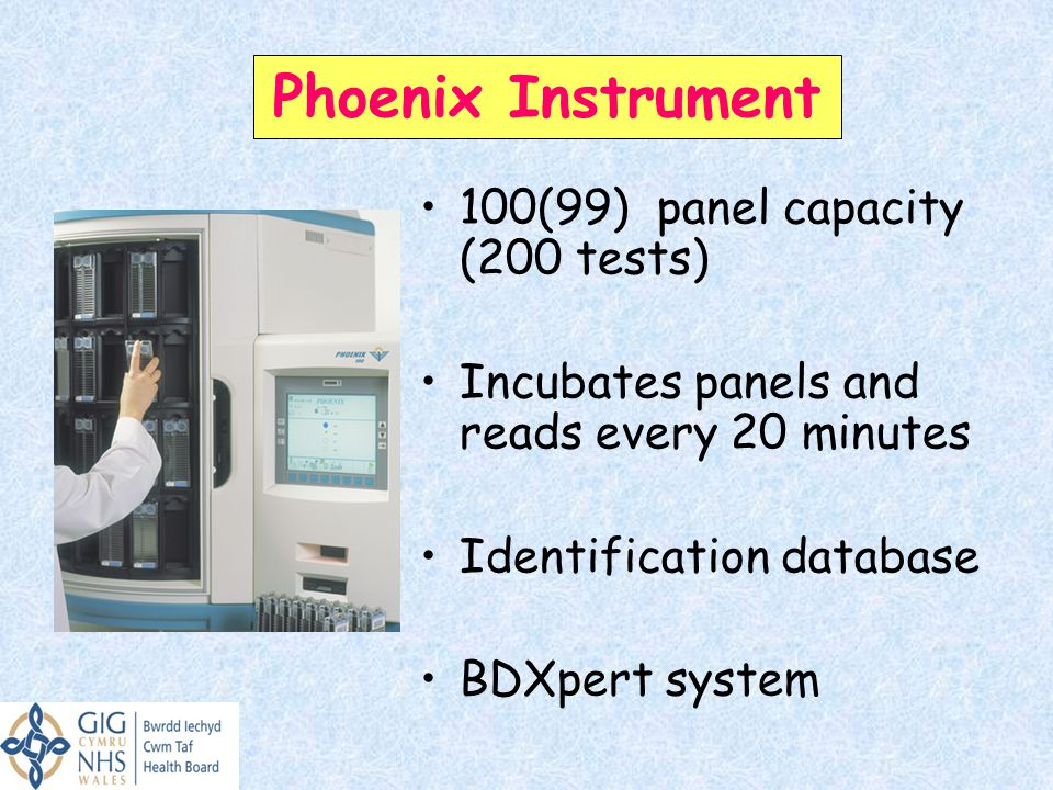 Phoenix Instrument 100(99) panel capacity (200 tests)