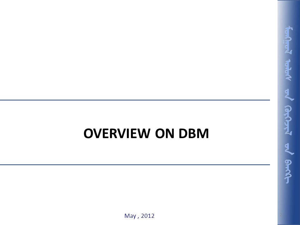 OVERVIEW ON DBM May , 2012