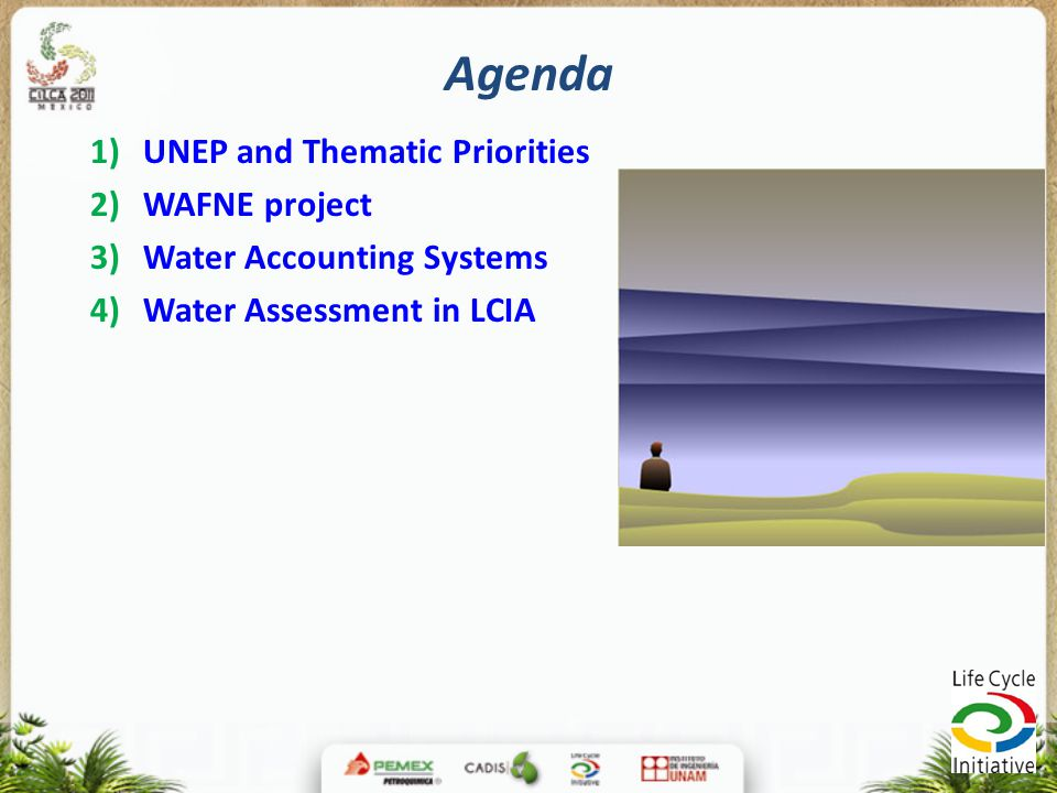 Agenda UNEP and Thematic Priorities WAFNE project