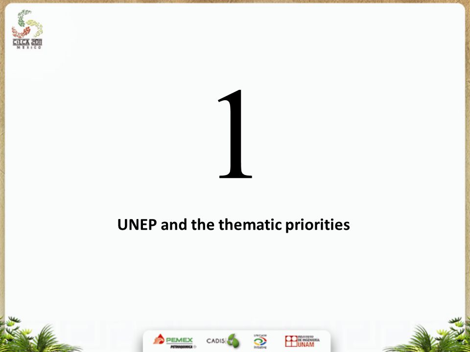 1 UNEP and the thematic priorities