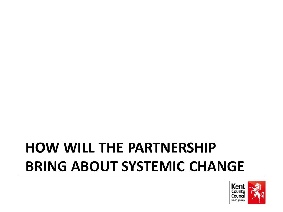 How will the partnership bring about Systemic Change