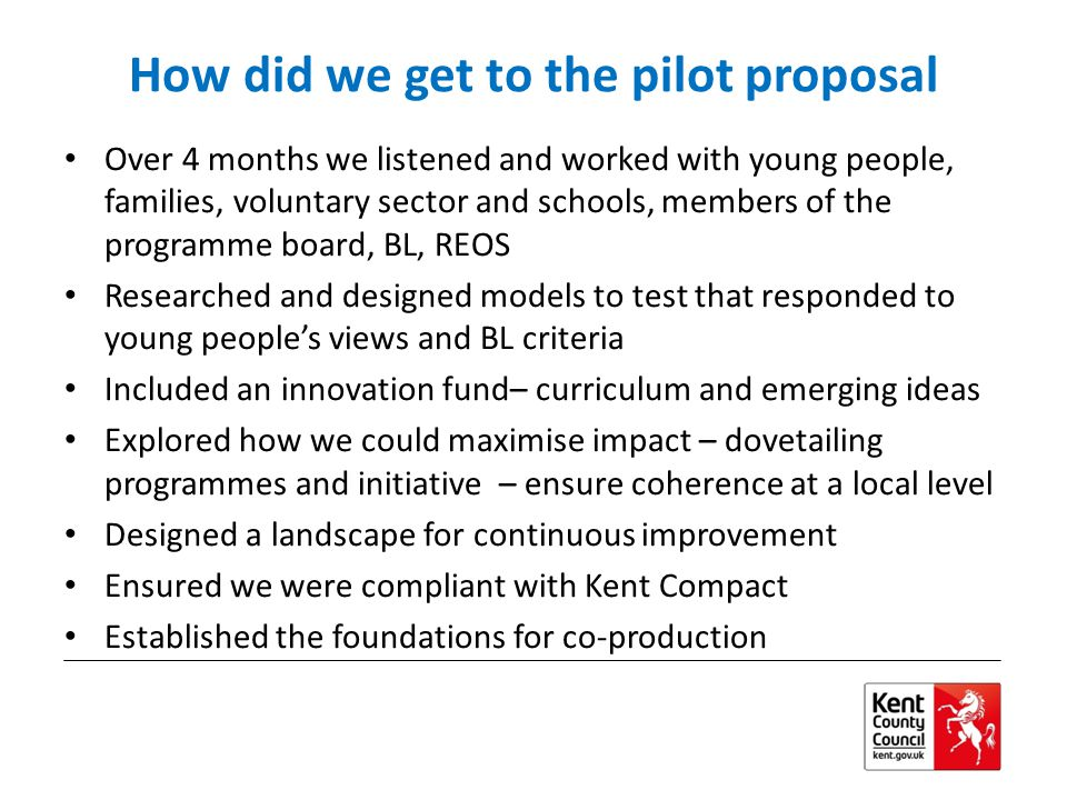 How did we get to the pilot proposal