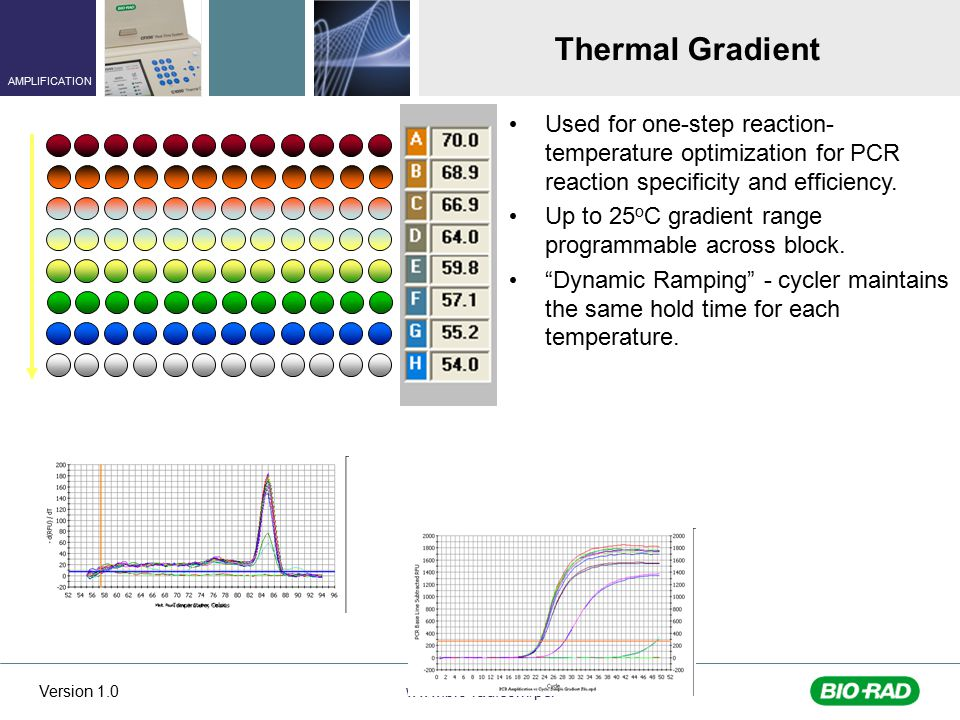 Thermal Gradient Used for one-step reaction-temperature optimization for PCR reaction specificity and efficiency.