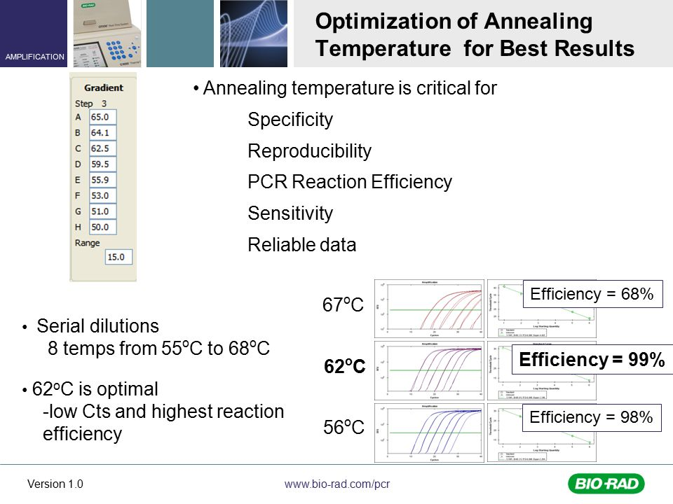Optimization of Annealing Temperature for Best Results