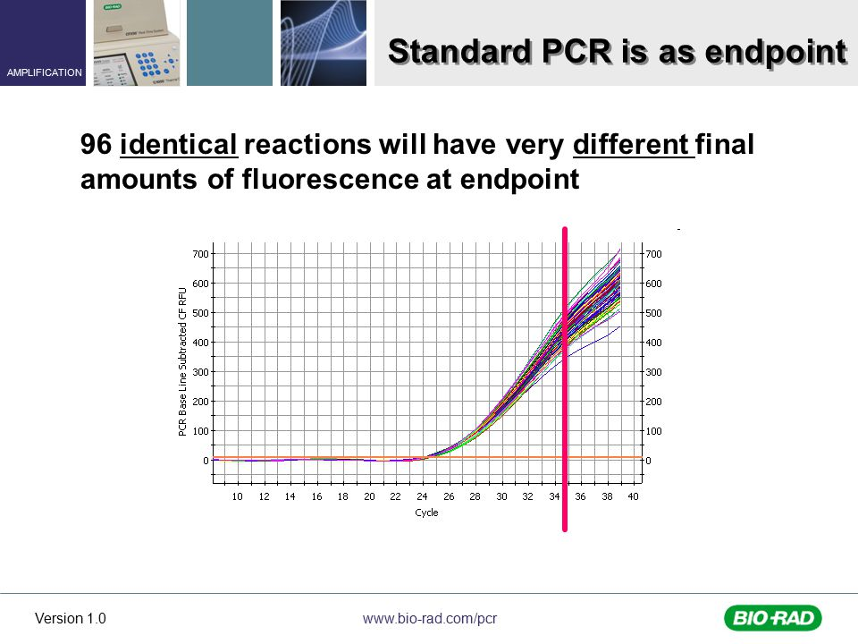 Standard PCR is as endpoint