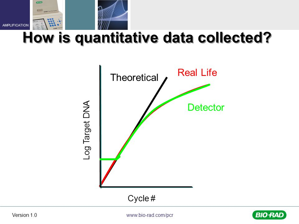 How is quantitative data collected