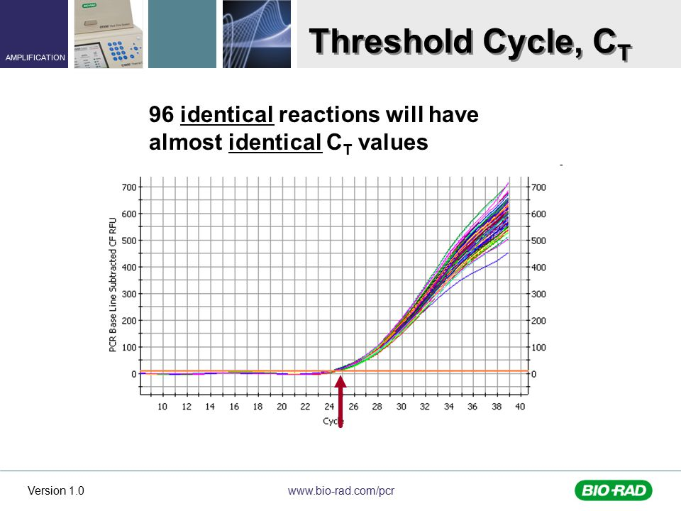 Threshold Cycle, CT 96 identical reactions will have