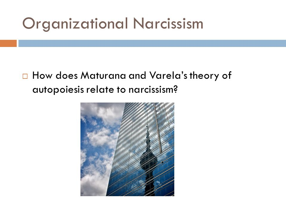 Organizational Narcissism