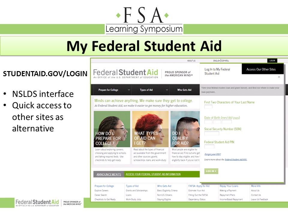 My Federal Student Aid NSLDS interface