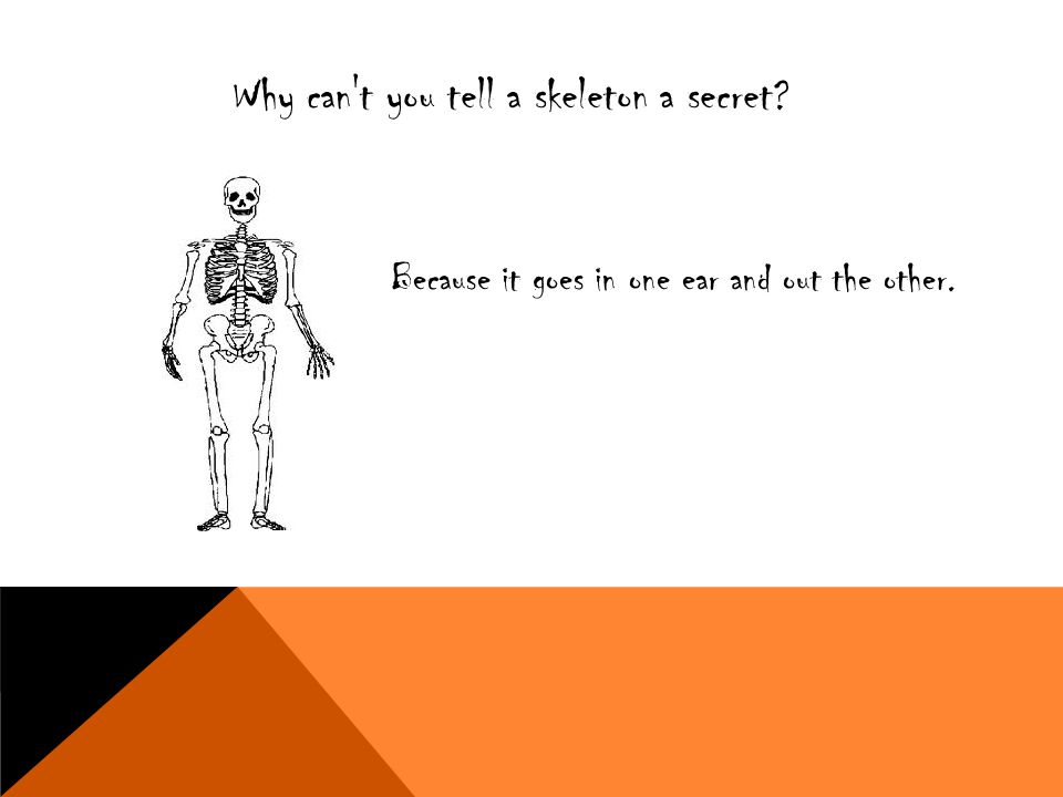 Why can t you tell a skeleton a secret