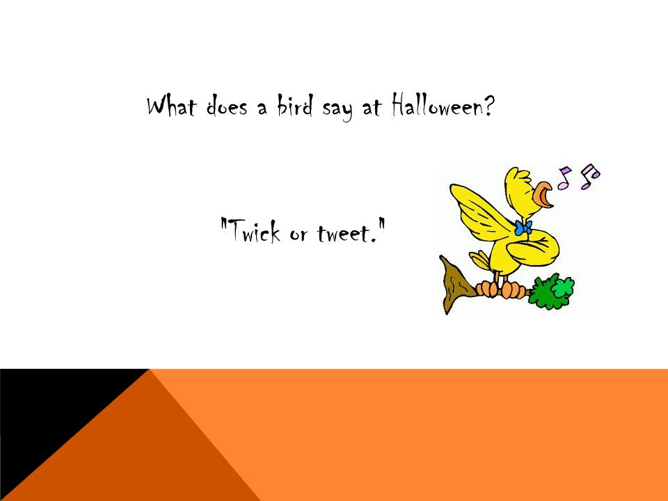 What does a bird say at Halloween