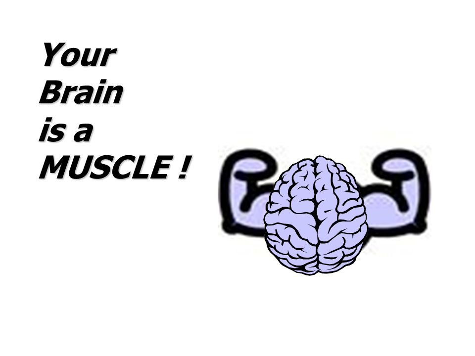 Your Brain is a MUSCLE ! BRAINS ARE MUSCLES.