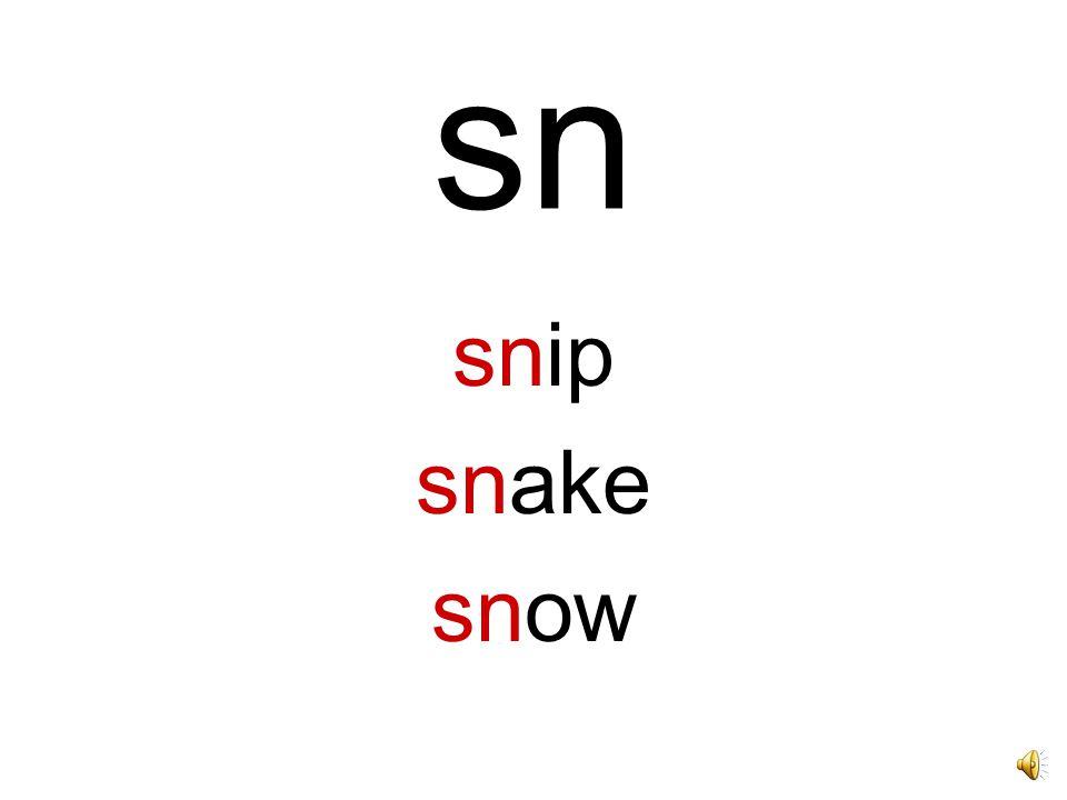 sn snip snake snow