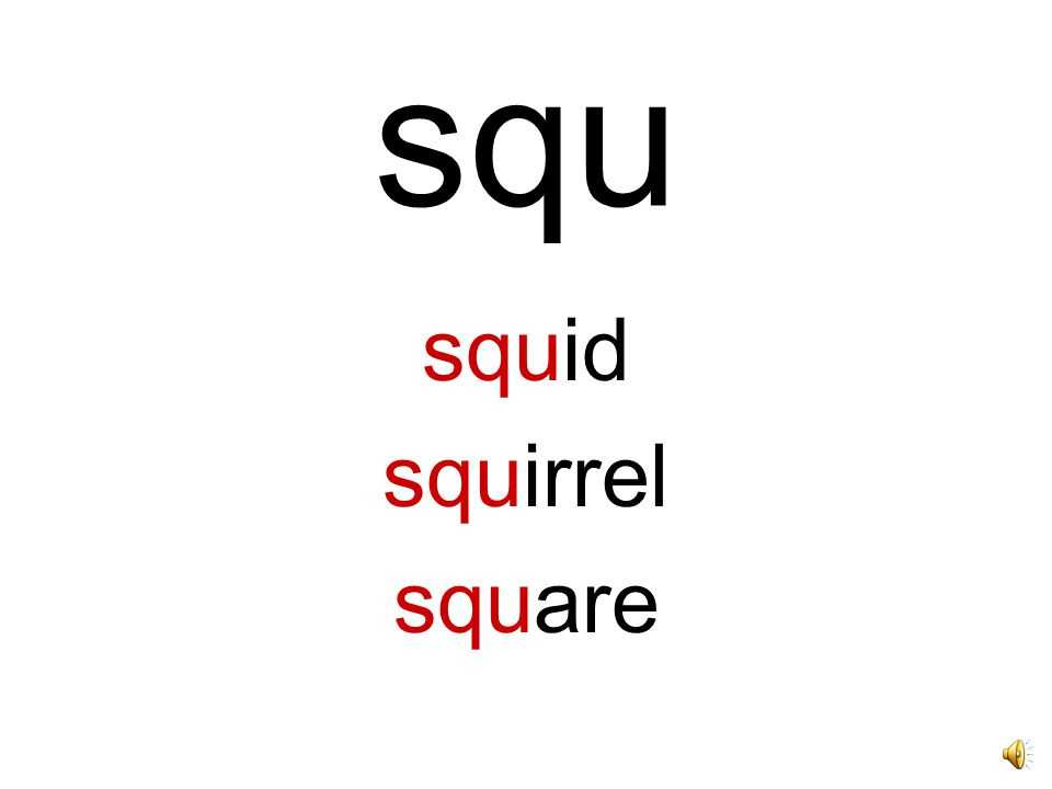 squ squid squirrel square