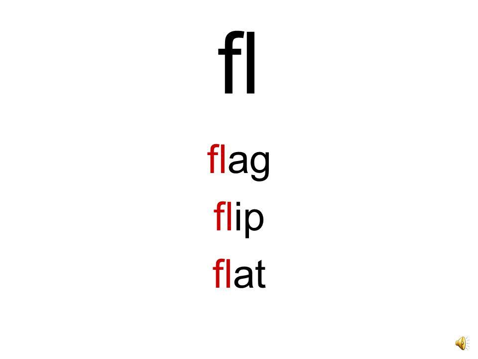 fl flag flip flat