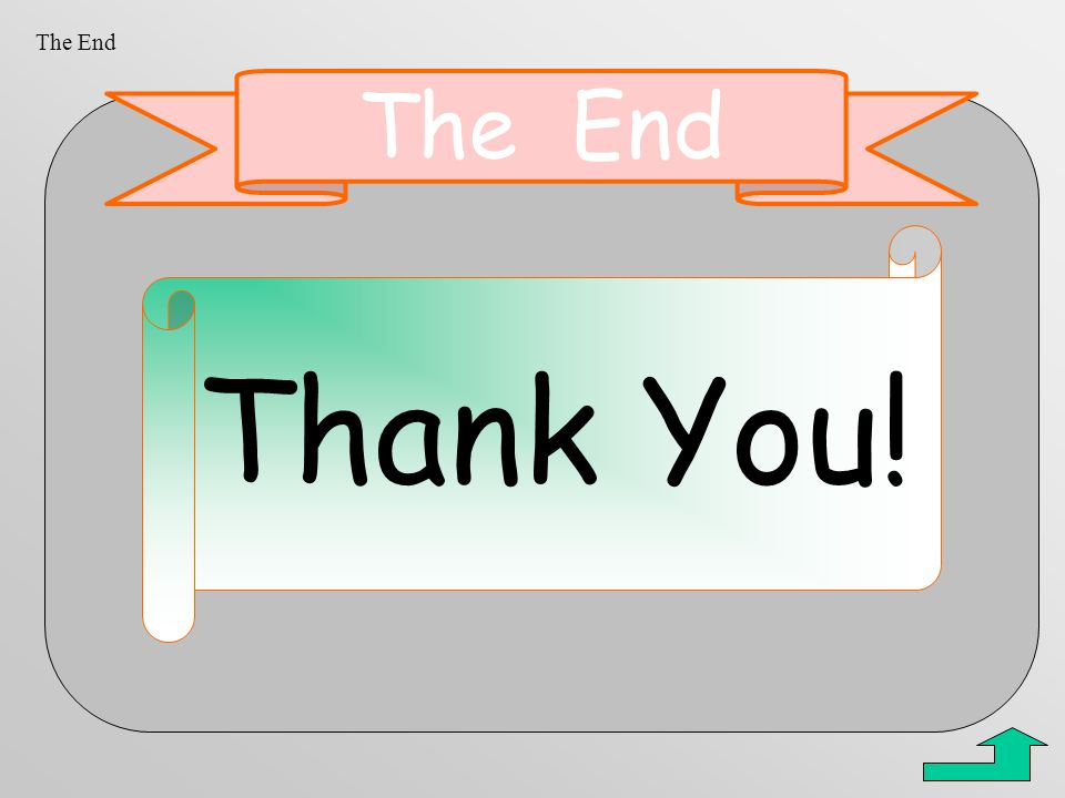 The End The End Thank You!
