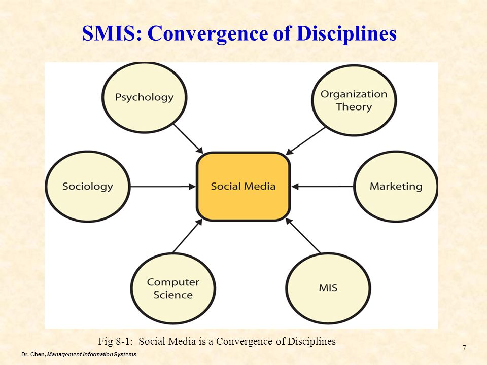 SMIS: Convergence of Disciplines