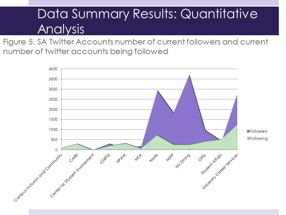 Data Summary Results: Quantitative Analysis