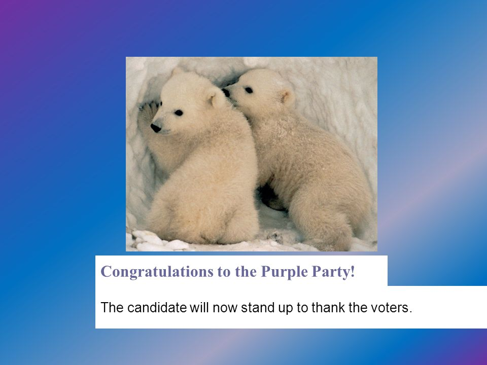 Congratulations to the Purple Party!