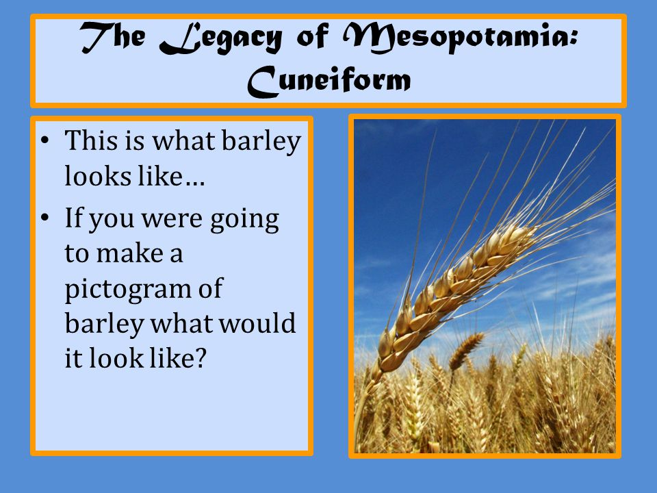 The Legacy of Mesopotamia: Cuneiform