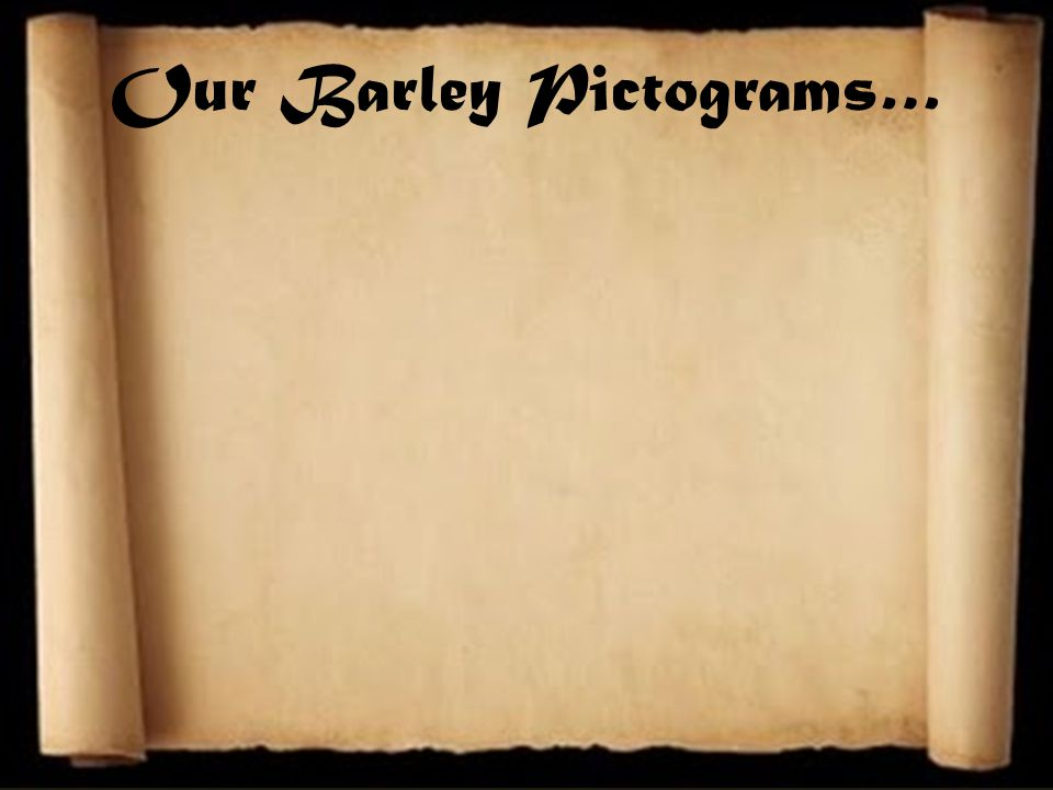 Our Barley Pictograms…