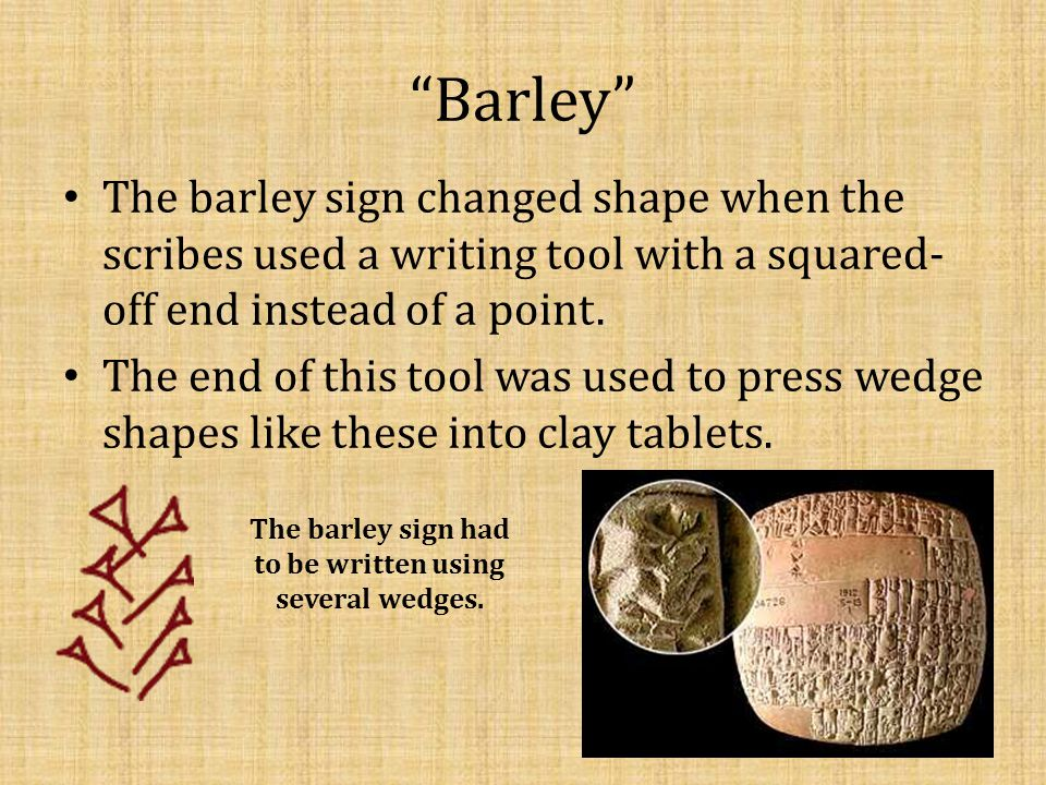 The barley sign had to be written using several wedges.