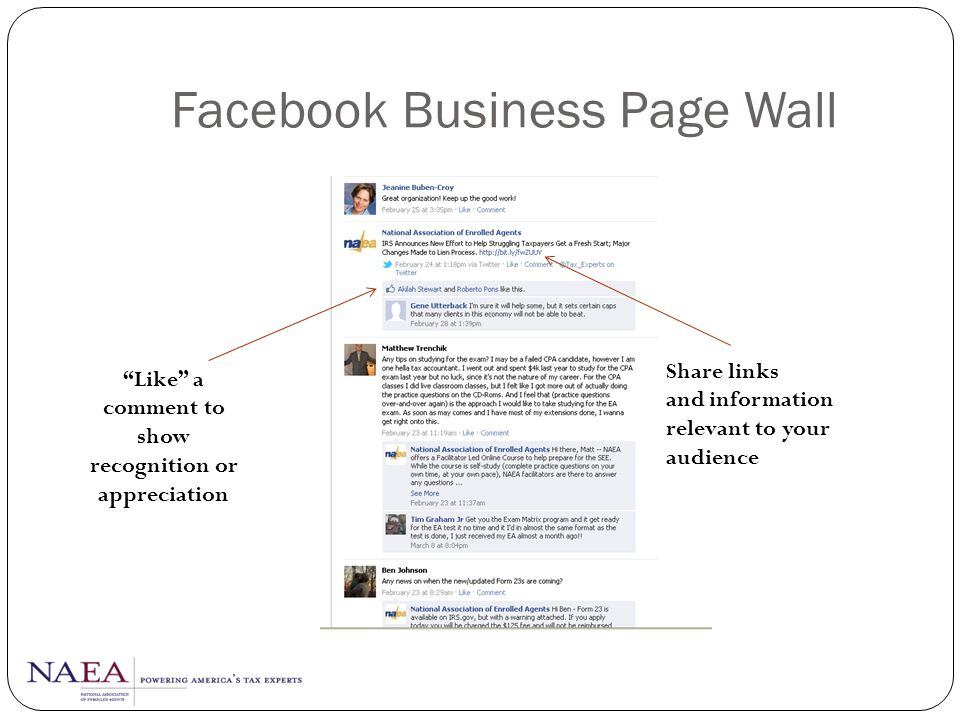 Facebook Business Page Wall