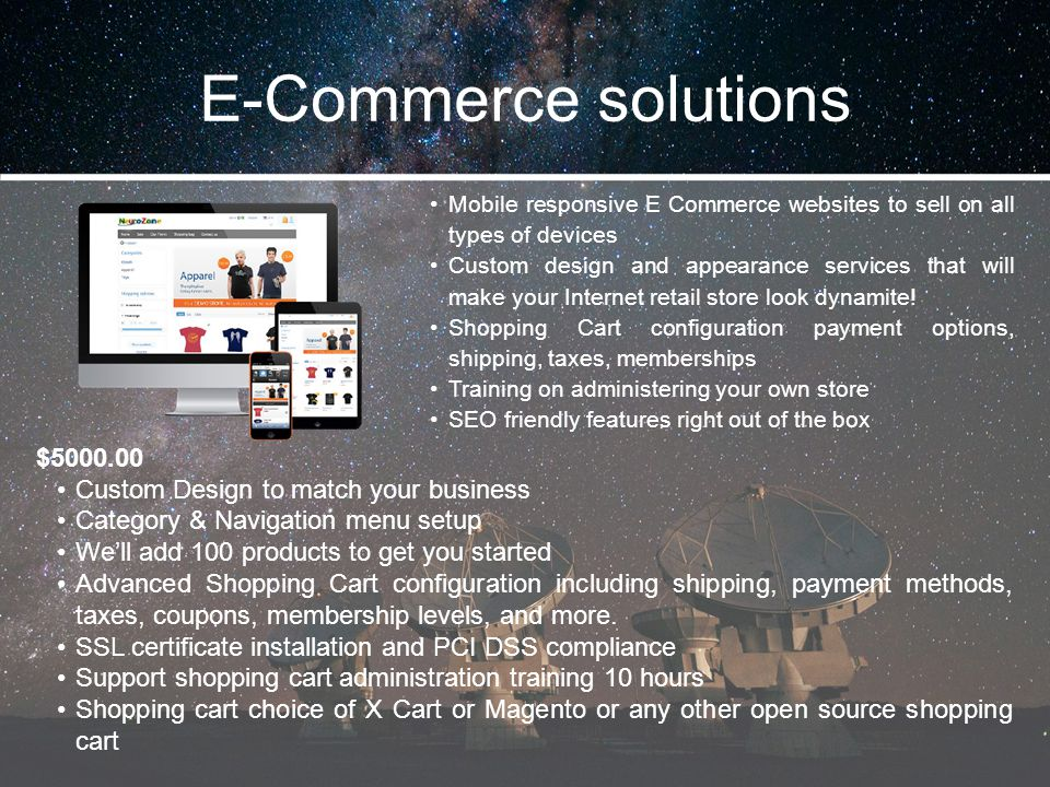 E-Commerce solutions $5000.00 Custom Design to match your business