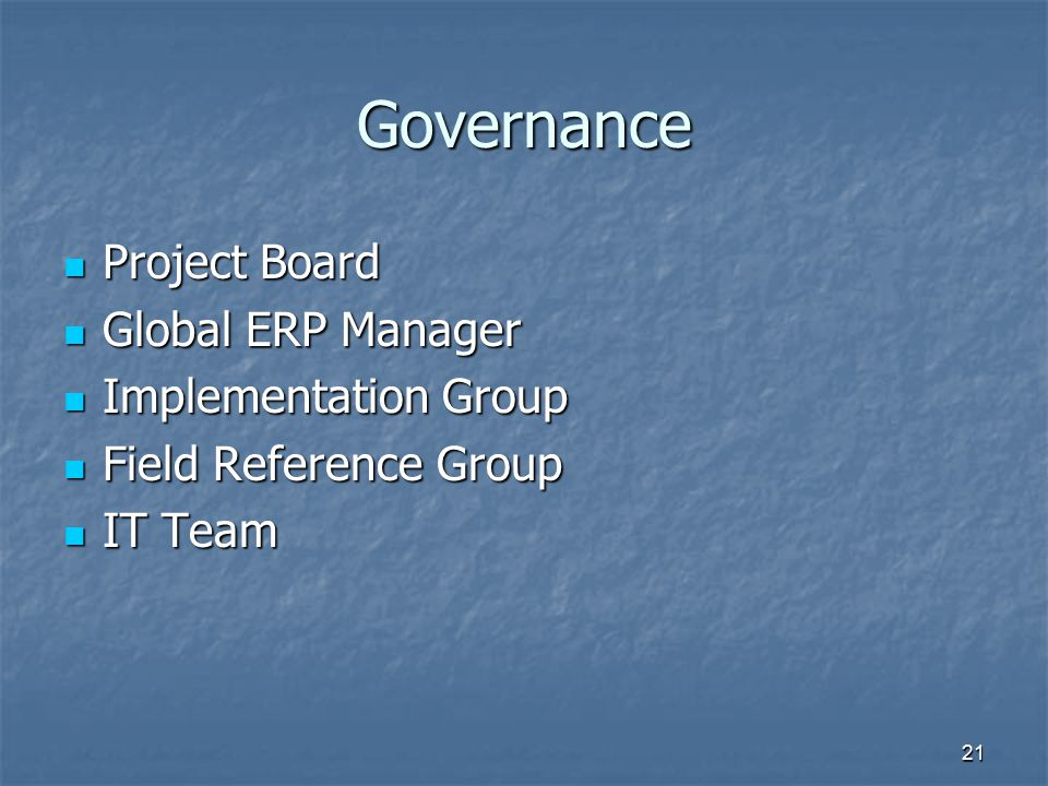 Governance Project Board Global ERP Manager Implementation Group
