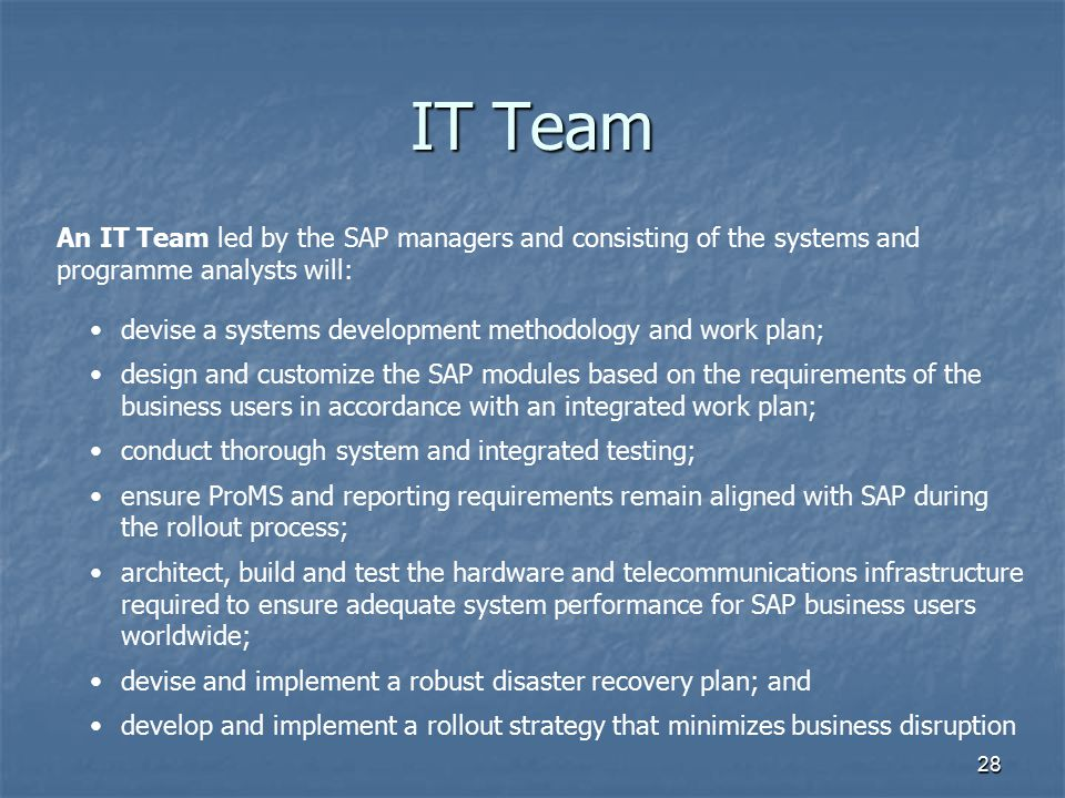 IT Team An IT Team led by the SAP managers and consisting of the systems and programme analysts will: