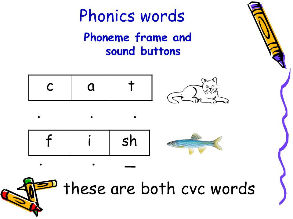 Phoneme frame and sound buttons