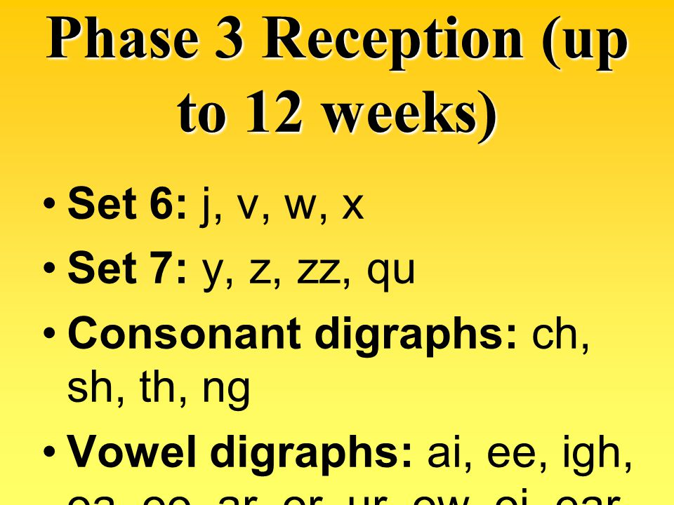 Phase 3 Reception (up to 12 weeks)
