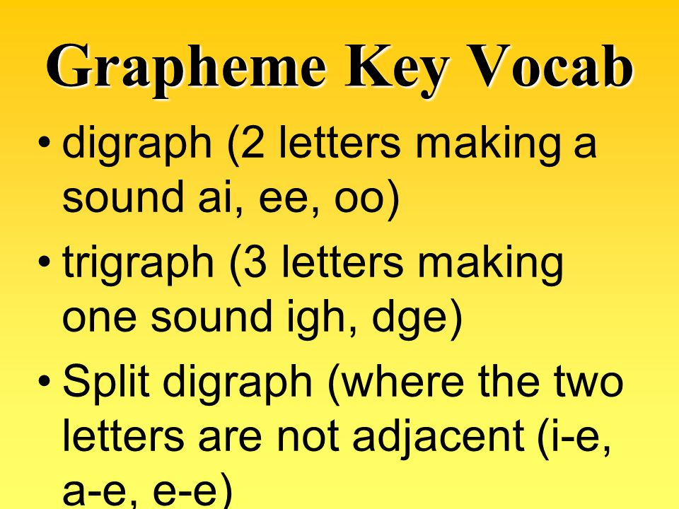 Grapheme Key Vocab digraph (2 letters making a sound ai, ee, oo)