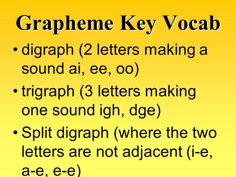 Grapheme Key Vocab digraph (2 letters making a sound ai, ee, oo)