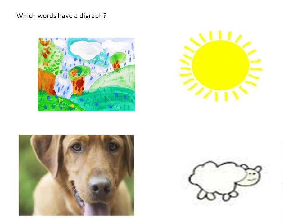 Which words have a digraph