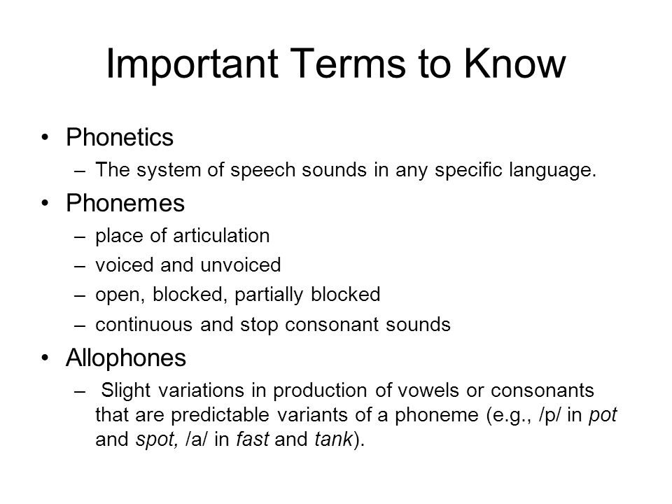 Important Terms to Know